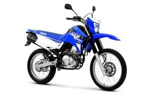 A Yamaha ainda em sua linha 2016 adicionou como única opção a tecnologia bi-combustível em seus modelos 250 cc, como Lander e Fazer.